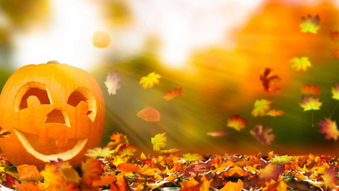 10 Memorable budget friendly fall activities